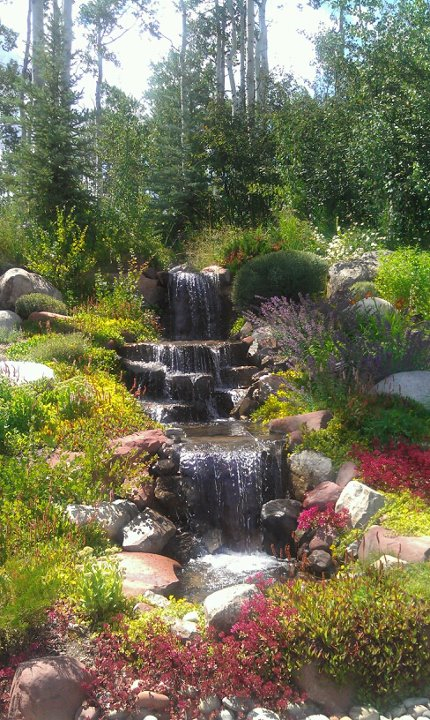 wooley water feature